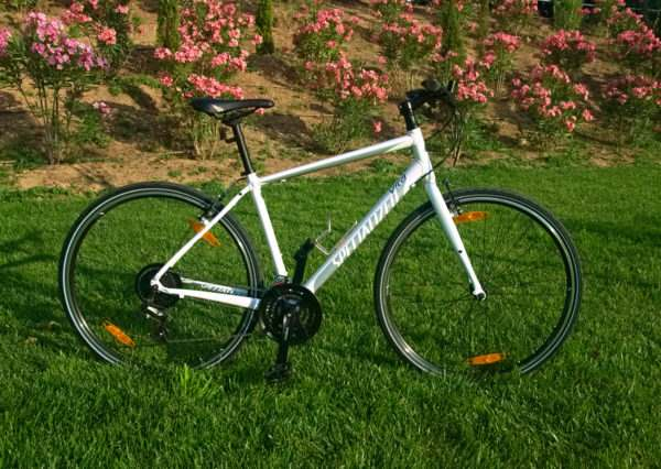 Bike Rentals in Athens - Women Fit Aluminium Fitness Bike Bicycle - Specialized Vita 2017
