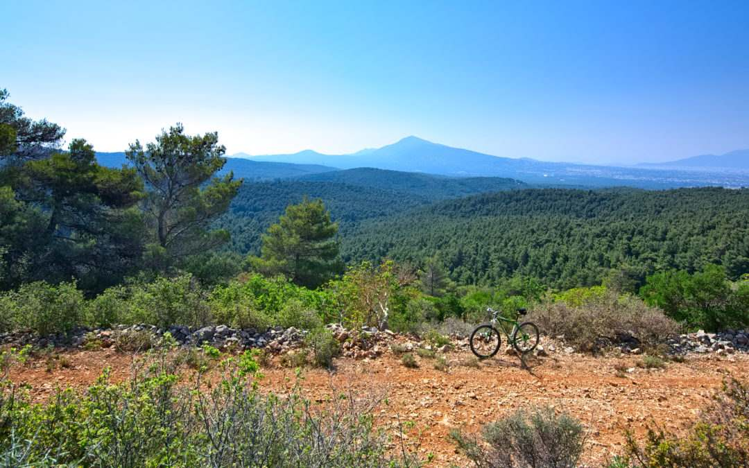 Mountain Biking (MTB) in Athens – Parnitha