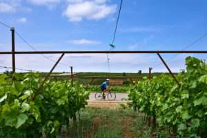 Cycling Peloponnese - Nemea bike wine tours - Gr Cycling